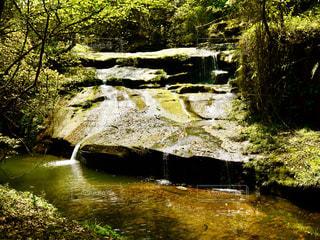 森の川の上の大きな滝の写真・画像素材[1491632]