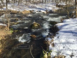 残雪のせせらぎの写真・画像素材[1762539]