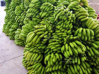 食べ物,フルーツ,果物,市場,台湾,バナナ,産地,集荷場