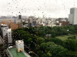 ガラス越しのつゆの写真・画像素材[2205011]