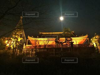 清水観音堂と月の松の写真・画像素材[4561663]