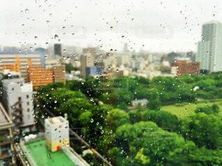 窓に残る雨のつぶの写真・画像素材[4580268]