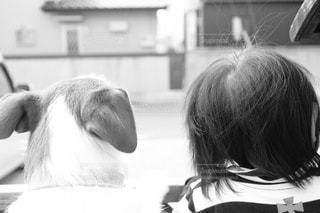 犬,赤ちゃん,男の子,1歳,ジャックラッセルテリア,1歳児,ツーショット,見た目は違えど家族,見た目や世界が違えど家族,言葉が話せなくても通じれる
