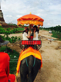 像,タイ,ツーショット