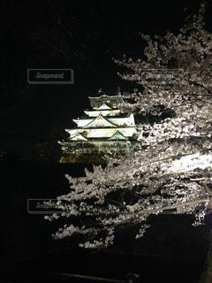 春 - No.403198