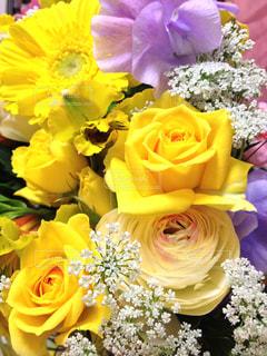 花束,バラ,プレゼント,お祝い,卒業,旅立ち,黄色いバラ