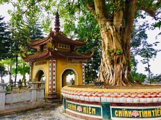 木,海外,緑,アジア,ベトナム,寺院,海外旅行,ハノイ,鎮国寺