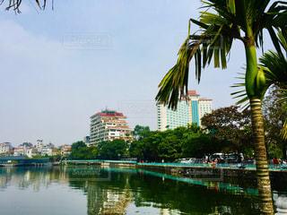 木,湖,海外,緑,アジア,ベトナム,快晴,海外旅行,ハノイ,タイ湖