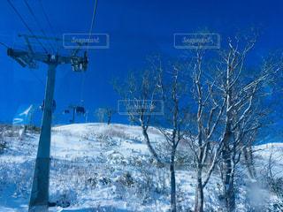 風景,アウトドア,空,冬,スポーツ,雪,屋外,青空,雪山,丘,樹木,人物,スキー,スノボ,ゲレンデ,レジャー,晴,リフト,スノーボード,樹氷,斜面,日中,冷,暖冬