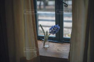 窓の上に花の写真・画像素材[2870656]
