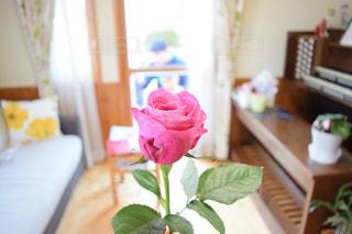 テーブルの上の花の花瓶の写真・画像素材[858150]