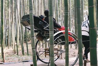 京都,観光,竹林,嵐山,人力車,久住高原,竹林の小道