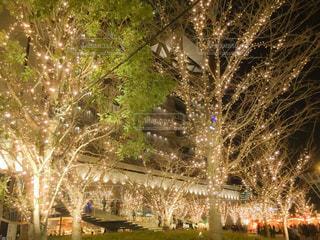 キラキラ大阪の写真・画像素材[931829]