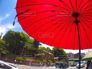 大きな赤い傘の写真・画像素材[1226092]