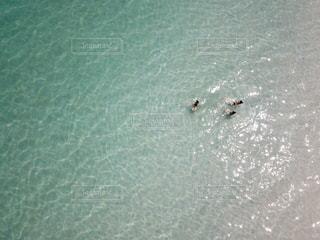 水の大きな体の写真・画像素材[1202212]