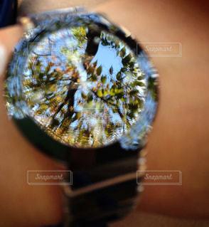 自然,時計,watch