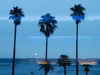 日没後のオーシャンビューの写真・画像素材[1432279]