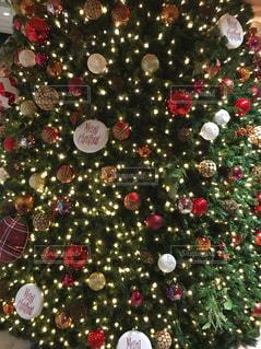 キラキラ,クリスマス,ツリー,クリスマスツリー,オーナメント