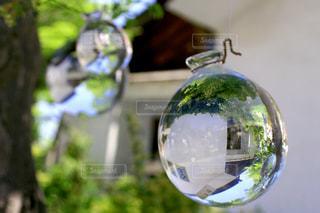 近くのガラス花瓶の写真・画像素材[1113147]