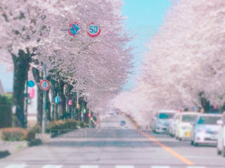 近くの通りのアップの写真・画像素材[1121958]