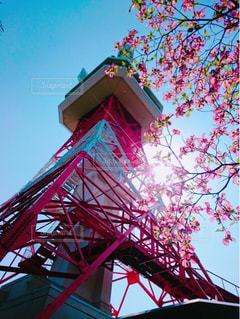 宇都宮タワーの写真・画像素材[1356009]