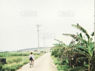 自転車,島,女子,女の子,サイクリング