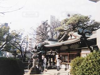 神社の写真・画像素材[439277]