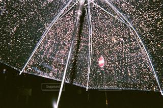 近くの黒い傘の写真・画像素材[1237235]