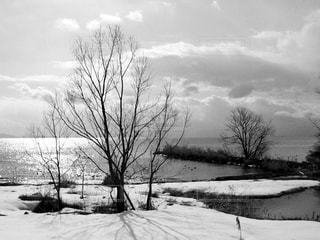 雪に覆われたフィールドの写真・画像素材[813165]