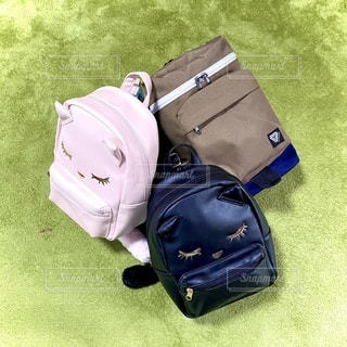 スーツケースの上に座っている荷物の袋の写真・画像素材[3316206]