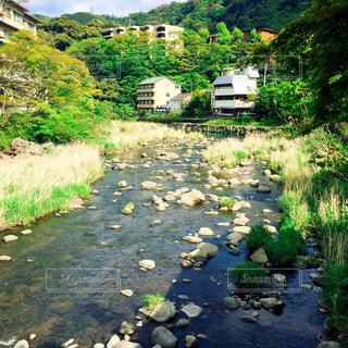 箱根の写真・画像素材[468032]