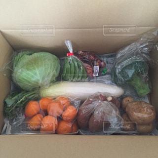 野菜の写真・画像素材[520186]