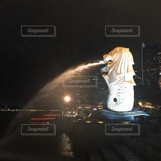 近くに夜にスケート ボードに乗って人のアップの写真・画像素材[1017648]
