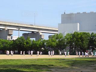 公園,スポーツ,小学生,野球,少年,野球場