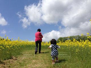 花畑の写真・画像素材[416601]