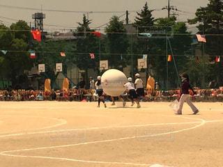 野球のゲームを再生する人々 のグループの写真・画像素材[769635]
