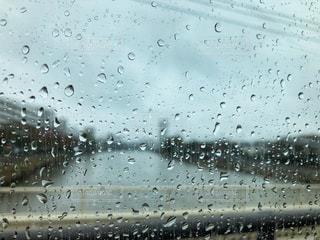 雨の写真・画像素材[835370]