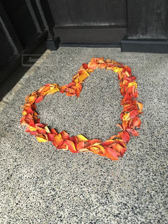 秋,紅葉,ハート