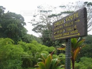 ハワイ島 滝の看板