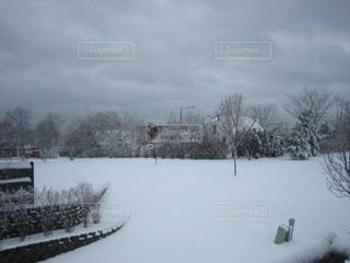 イリノイ州シカゴの冬