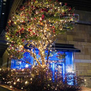 建物の前に座っているクリスマス ツリー - No.918678