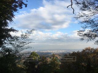 東京,街,高尾山,全景,I LOVE TOKYO
