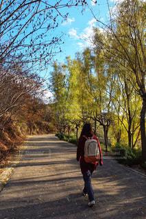 散歩 - No.1171324