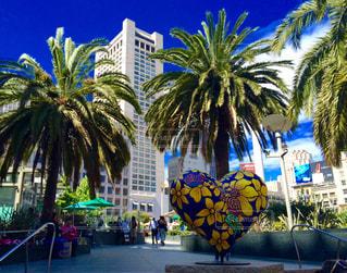 空,海岸,アメリカ,ハート,America,サンフランシスコ,beach,Sky,heart,カリフォルニア,California,フレッシュ,sunny,フィッシャーマンズワーフ,ユニオンスクエア,Pier39,SanFrancisco
