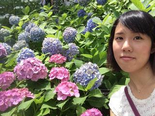 花,花畑,雨,傘,あじさい,青,お花,紫陽花,ムラサキ