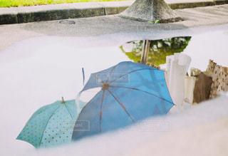 雨上がりの写真・画像素材[1218172]
