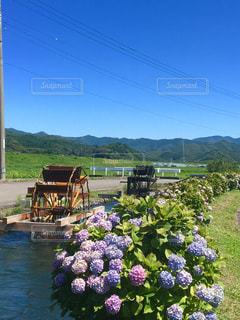 青空,紫陽花,梅雨,水車,四万十川,高知県,四万十