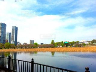 上野,不忍池