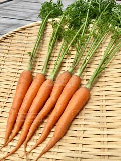 No.525997 野菜
