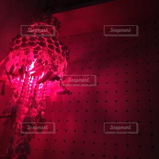 赤の写真・画像素材[533963]